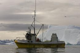 Fishing by iceberg, by Daniel Heaf