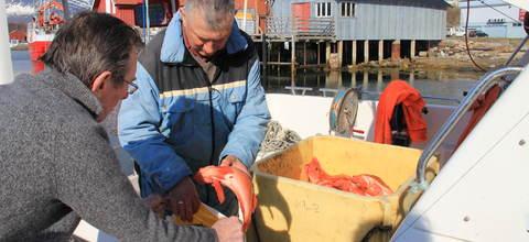 Fiskehandel på Inndyr