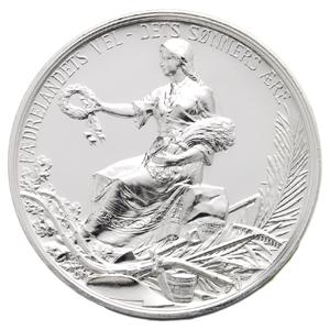Solvmedaljen hvit bakgrunn_300x300.jpg