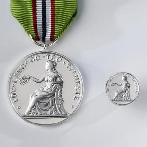 Medalje og jakkemerke.jpg