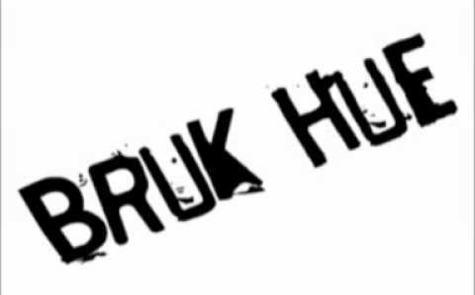 Logo, bruk hue