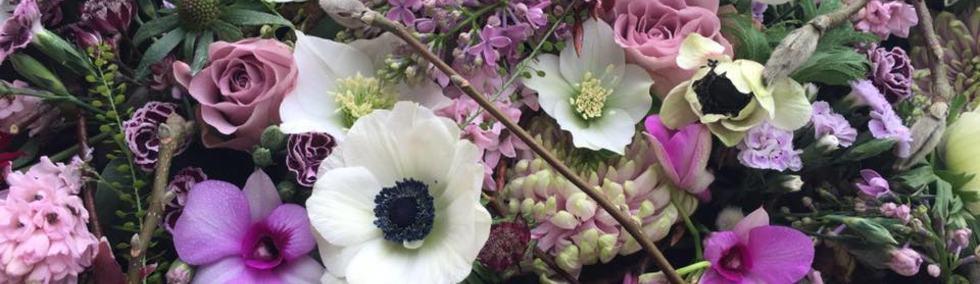 vårlig rosatoner