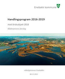 Forside - Handlingsprogram 2016 - 2019_250x304.jpg