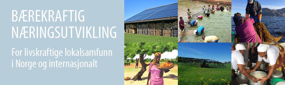 Bærekraftig næringsutvikling plakat