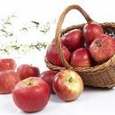 ingress epledagen