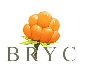 bryc logo PNG.png