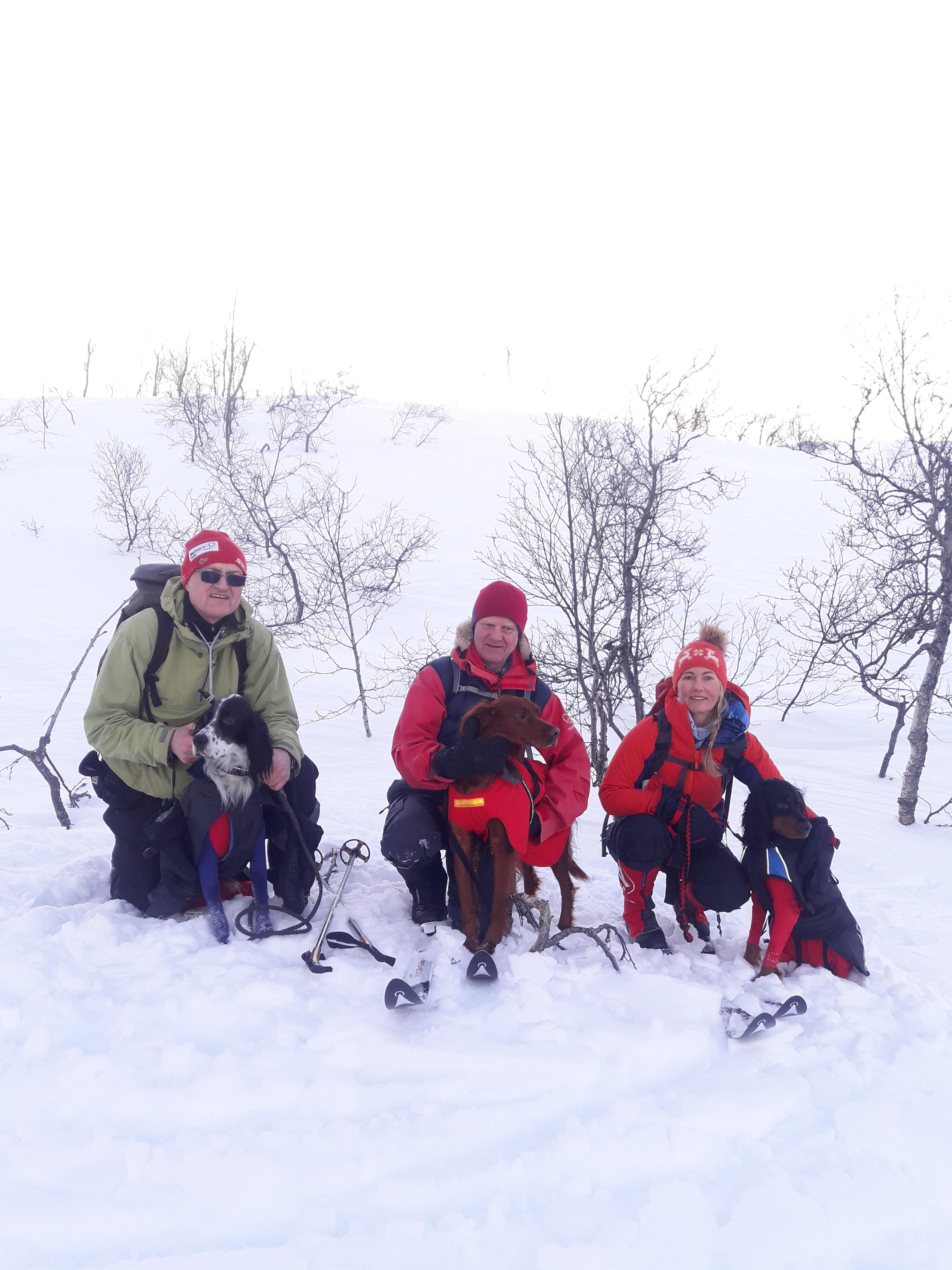 Bergensdekkenet 2018 AK.jpg
