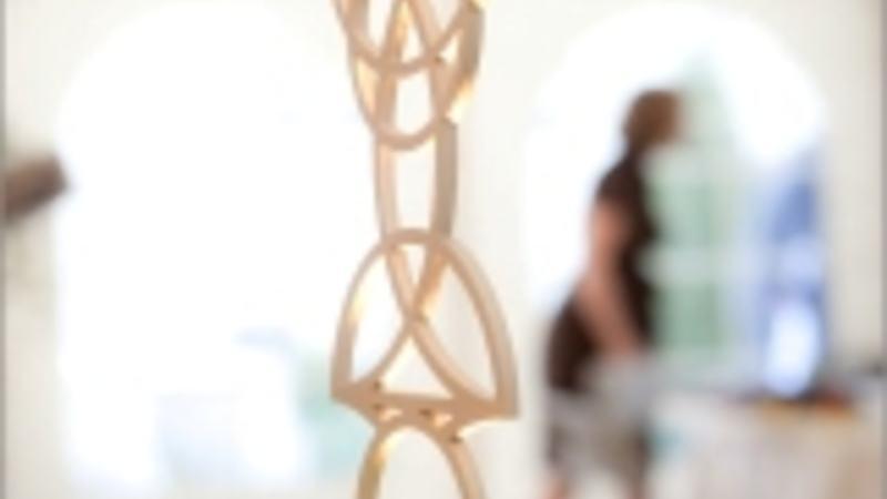 Wirtschaftspreis 2011