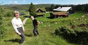 Ånebjør 2 - IMG_9213