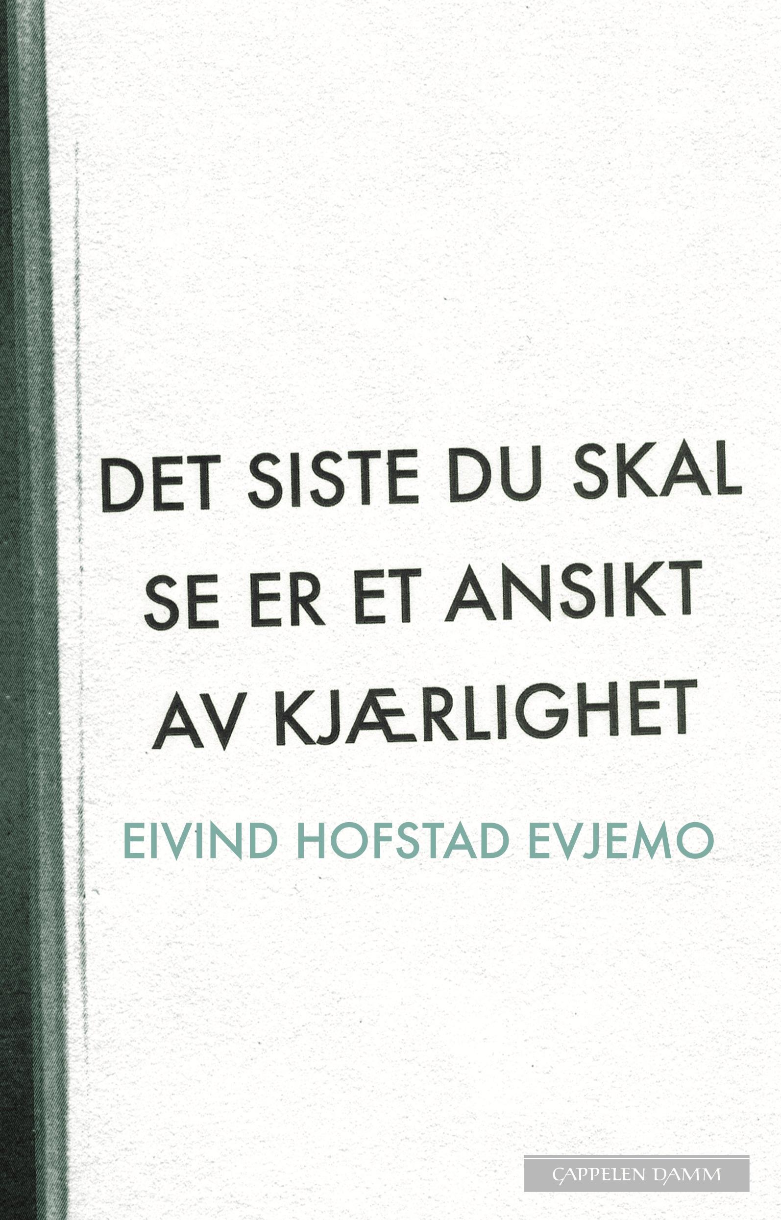 Eivind Hofstad Evjemo: Det siste du skal se er et ansikt av kjærlighet.