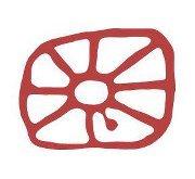Riddu logo[1]