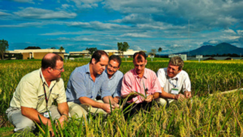 Sustainable Events - IRRI Images - Flickr_300x200