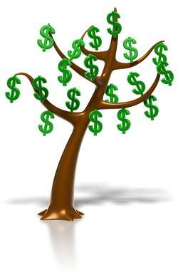 dollar_tree_800_8754