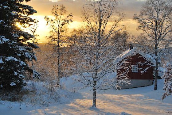 julestemning_oppeid_siv_idunnsdatter_skoglund