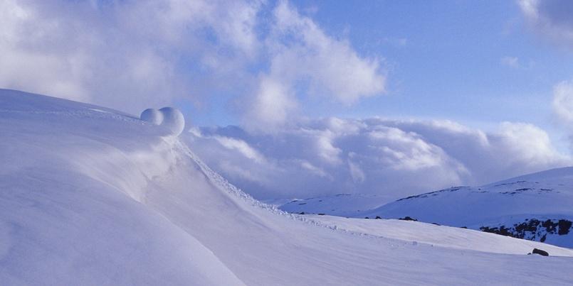 Snowball bilde