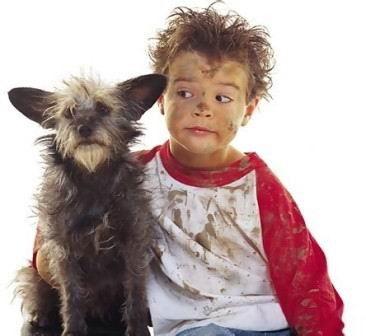 Barn og dyr op gjenvinningsstasjonen