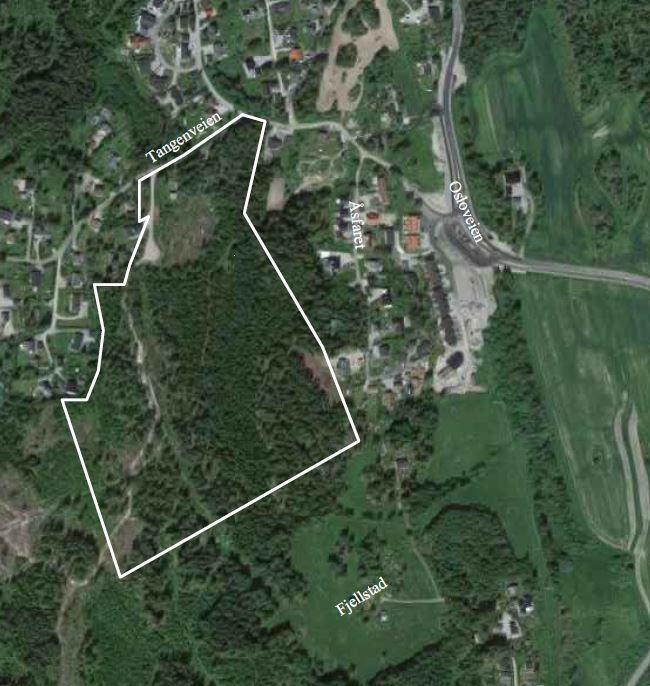 Råkenåsen - Vik skog