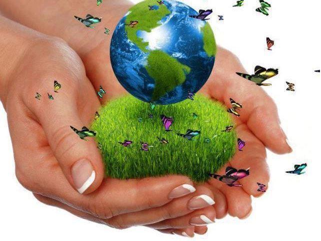 ta vare på jorden