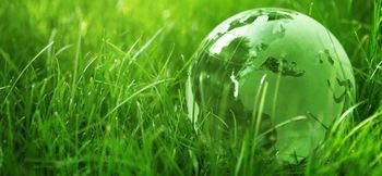 green in grass