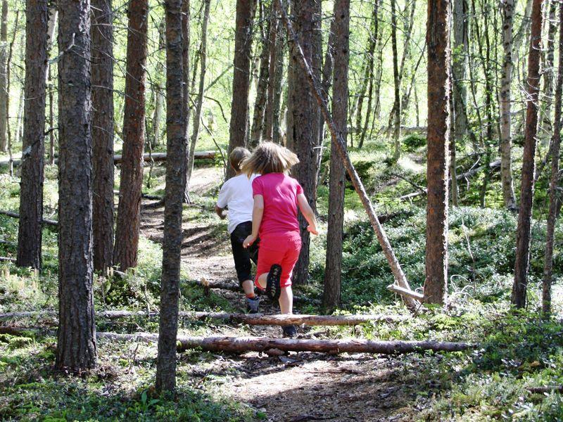 Barn som løper i skogen