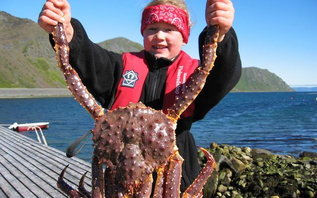 Anita og krabben_640x480