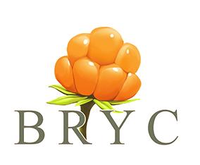 BarentsYouth logo
