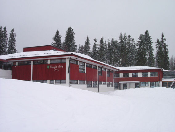 Hauglia skole