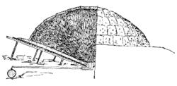 Tegning av tjæremile Wikipedia