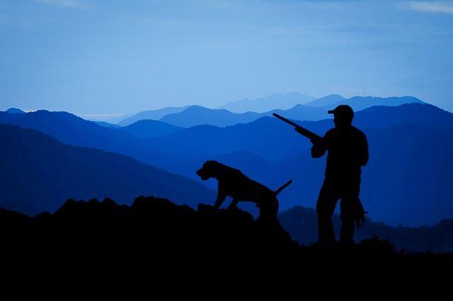 Hunting (Pixabay.com)