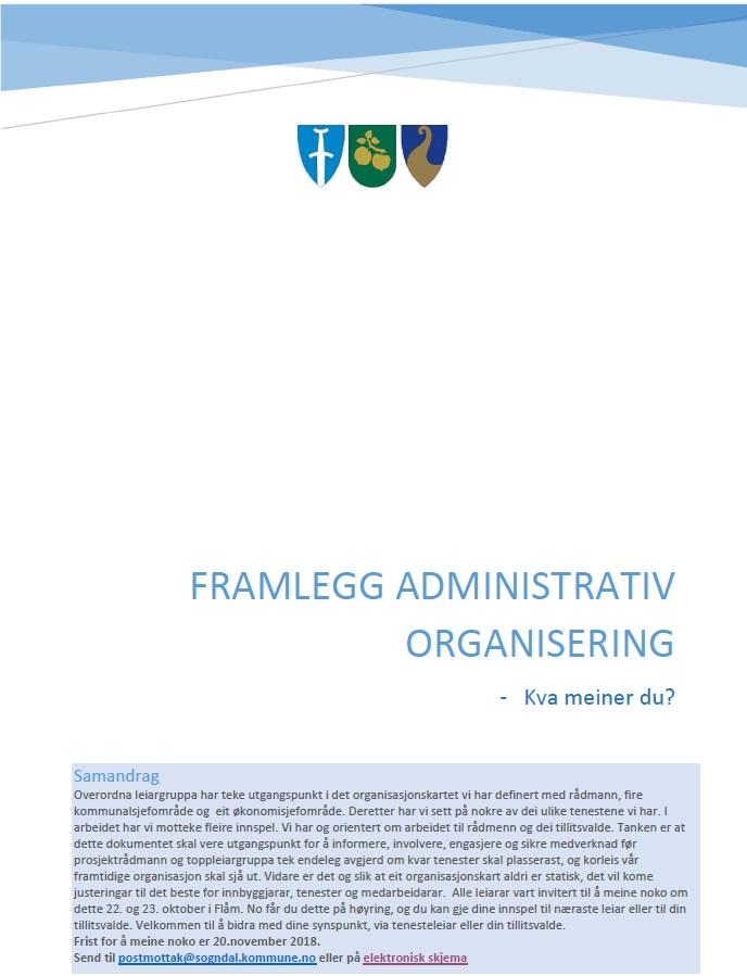 Illustrasjon Høyring - adm organisering