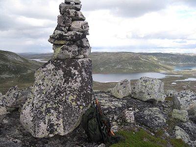 Hardangervidda nasjonalpark