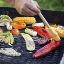 ingress grilling