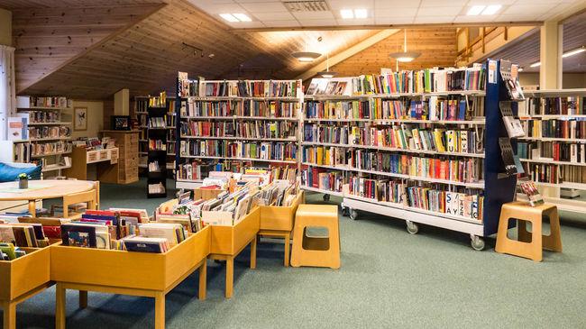 Vinje bibliotek