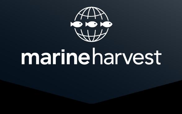 Marine_Harvest_Logo (2)