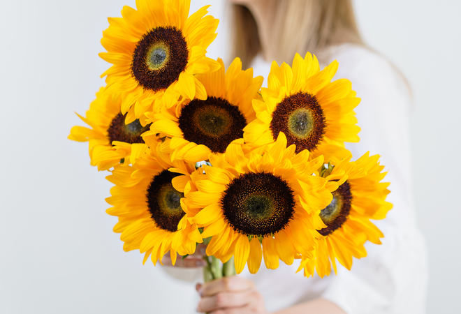 gule blomar