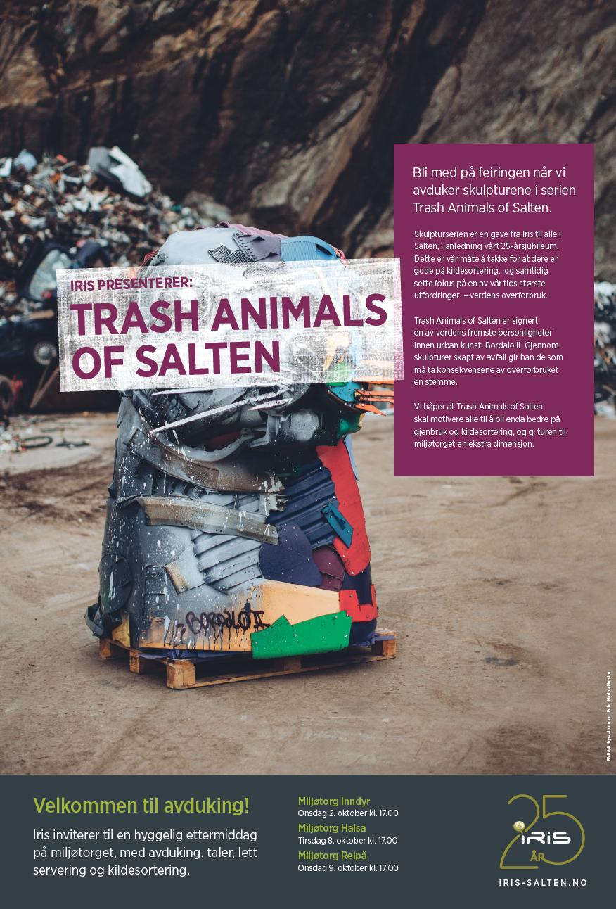 Trash Animals of Salten, plakat.png