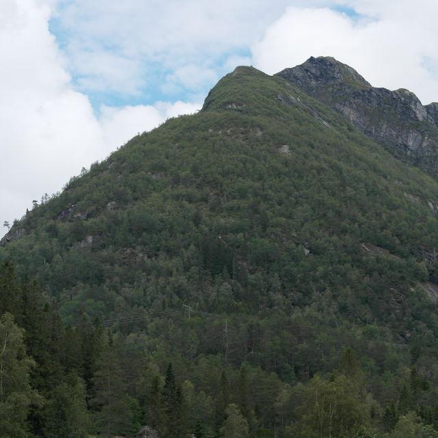 Fotografi av ein fjelltopp med mykje skog