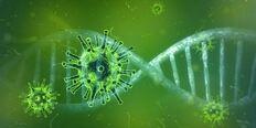 Koronavirus (Pixabay.com Pete Linforth)