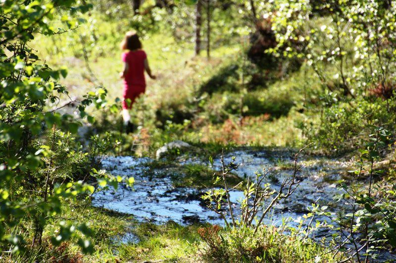 Lulledalen 2012 Foto Elin Solli