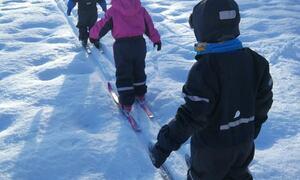 Skidag