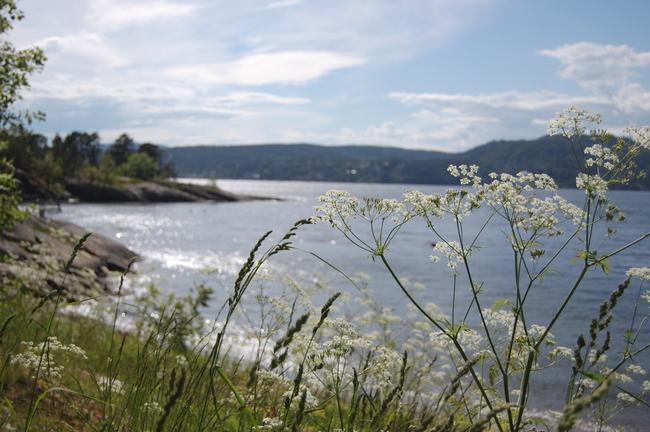Emmerstad - et fint utgangspunkt for turer i nærområdet Foto: Wenche I. Bro