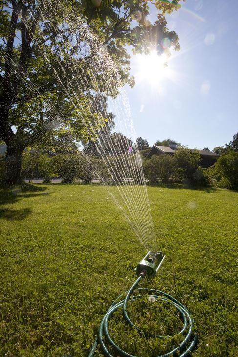 Restriksjoner vanning