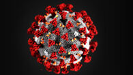 Koronavirus_200x113