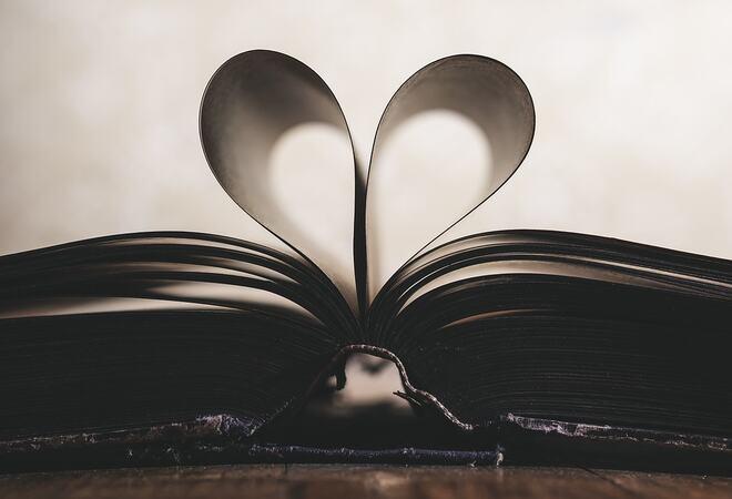 Boksider formet som et hjerte