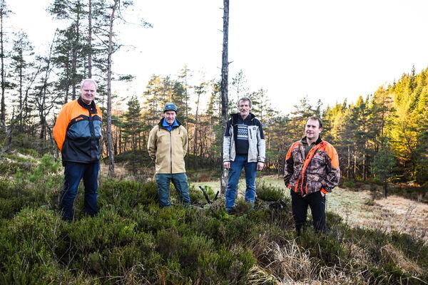 Fra venstre: Skogbrukssjef Trond Konstali, skogeiere Johannes Løvland, Egil Ove Lindeli, Ståle Haukelid. FOTO: Anette Larsen Aass, Avisen Agder