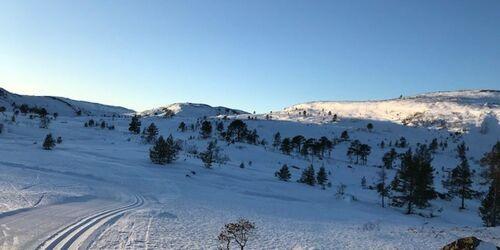 ski-terreng