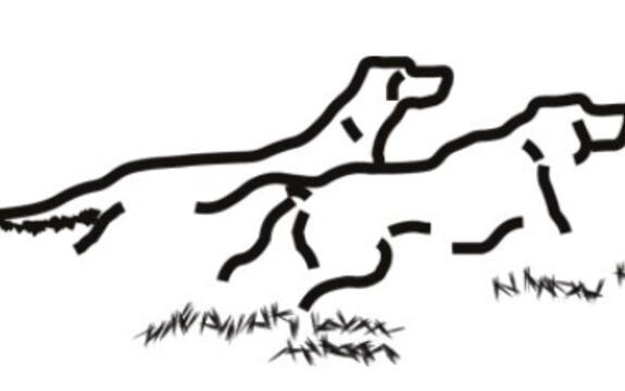 FKF logo[1]