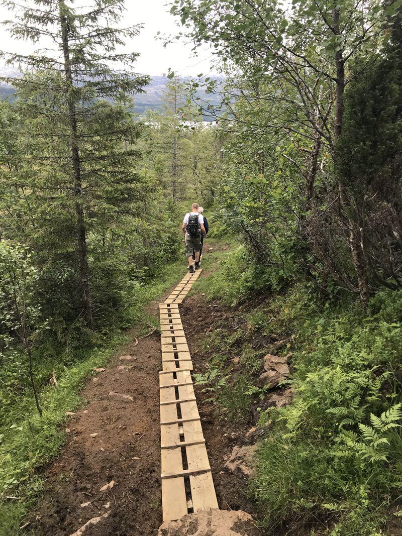 Klopping på stien til Remman. Foto: Hege Ansnes Igeland