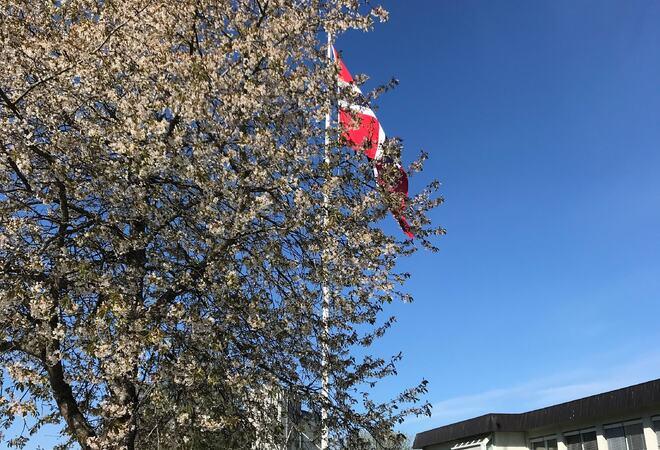 Flagging utenfor Vestby rådhus