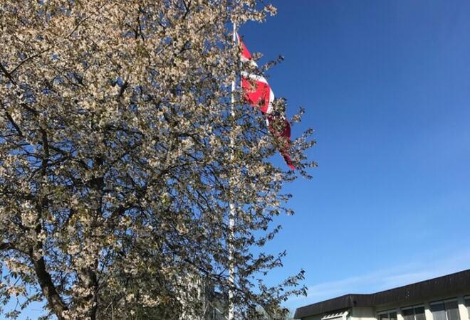 Flagging utenfor Vestby rådhus Foto: Vestby rådhus